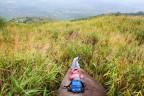 Những điểm đến hoang sơ gần TP.HCM cho chuyến đi một ngày